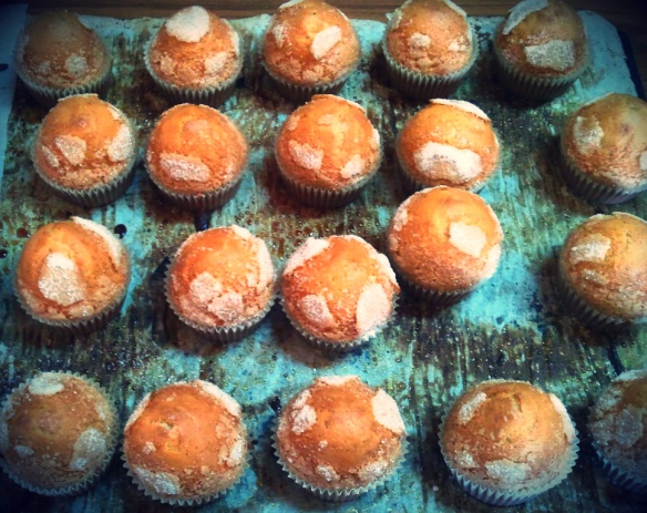 Madalenas recien horneadasde la panaderia Margarita